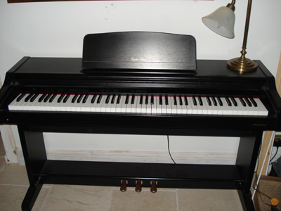 Technics Digital Piano on best portable keyboard under 500